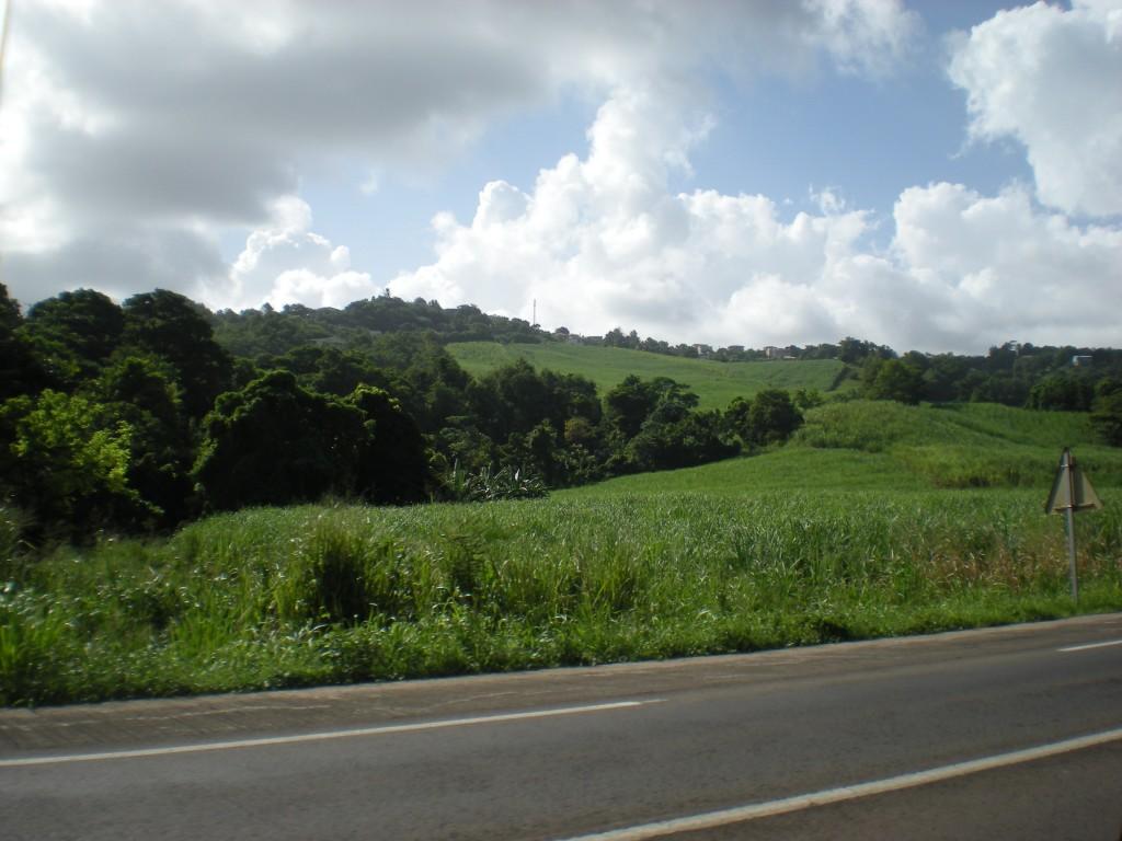 Campagne, Countryside, in Trinite