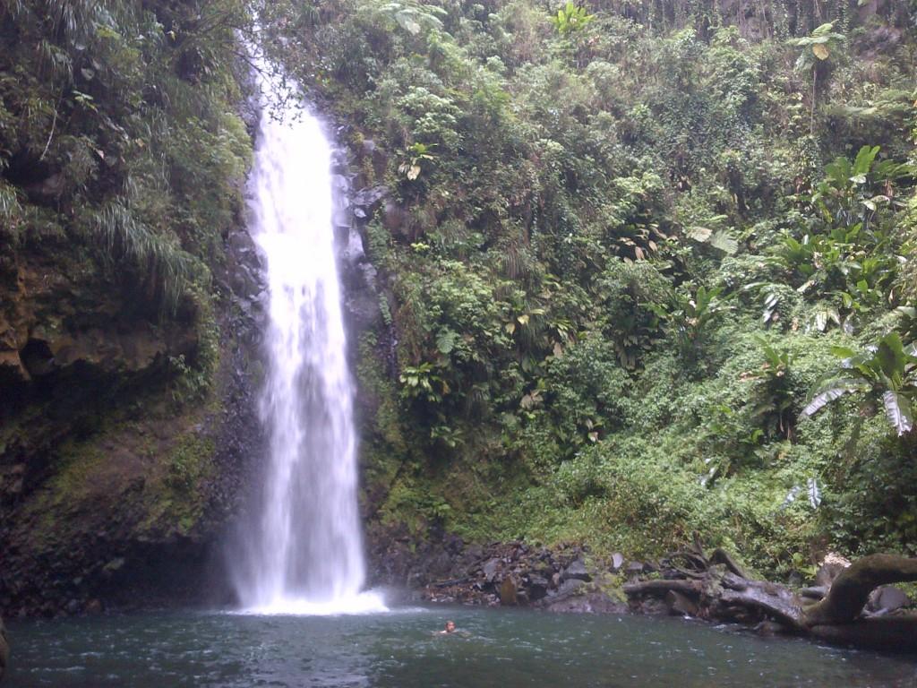 Fontaine de Didier, Didier waterfall, cascade, Martinique