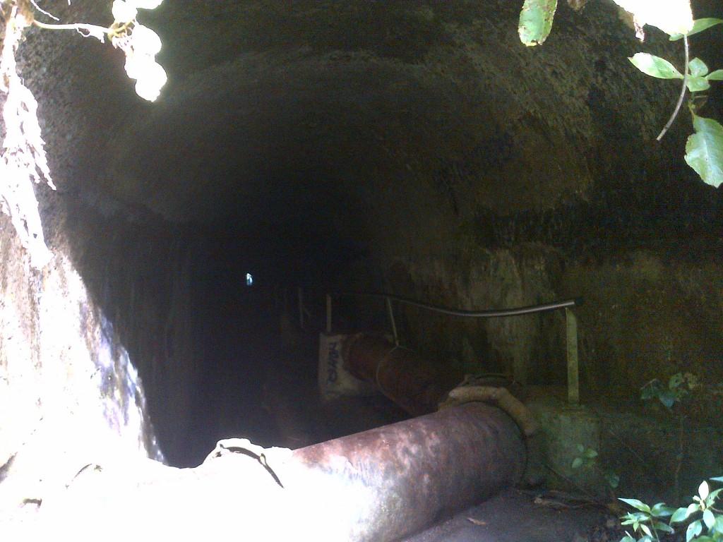 Tunnel, Didier, Martinique