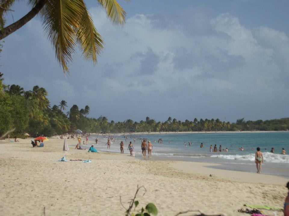 sex on the beach, Les Salines, Sainte Anne, Martinique