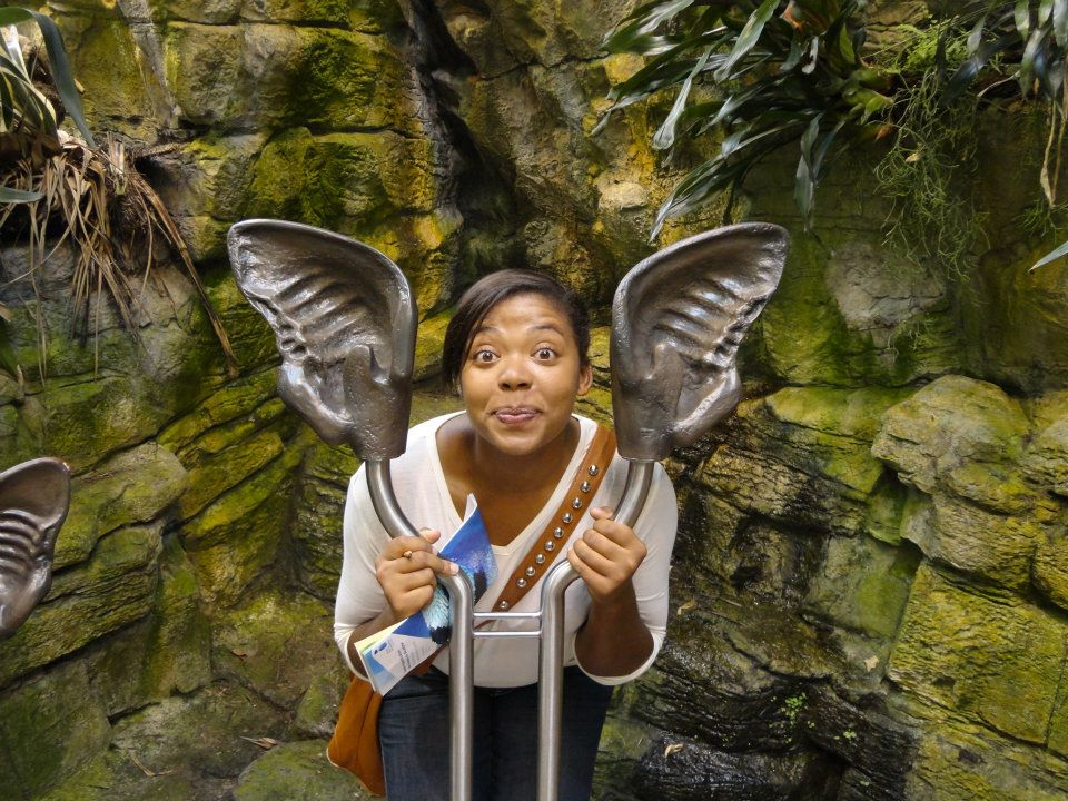 Bat ears, biodome in Montreal