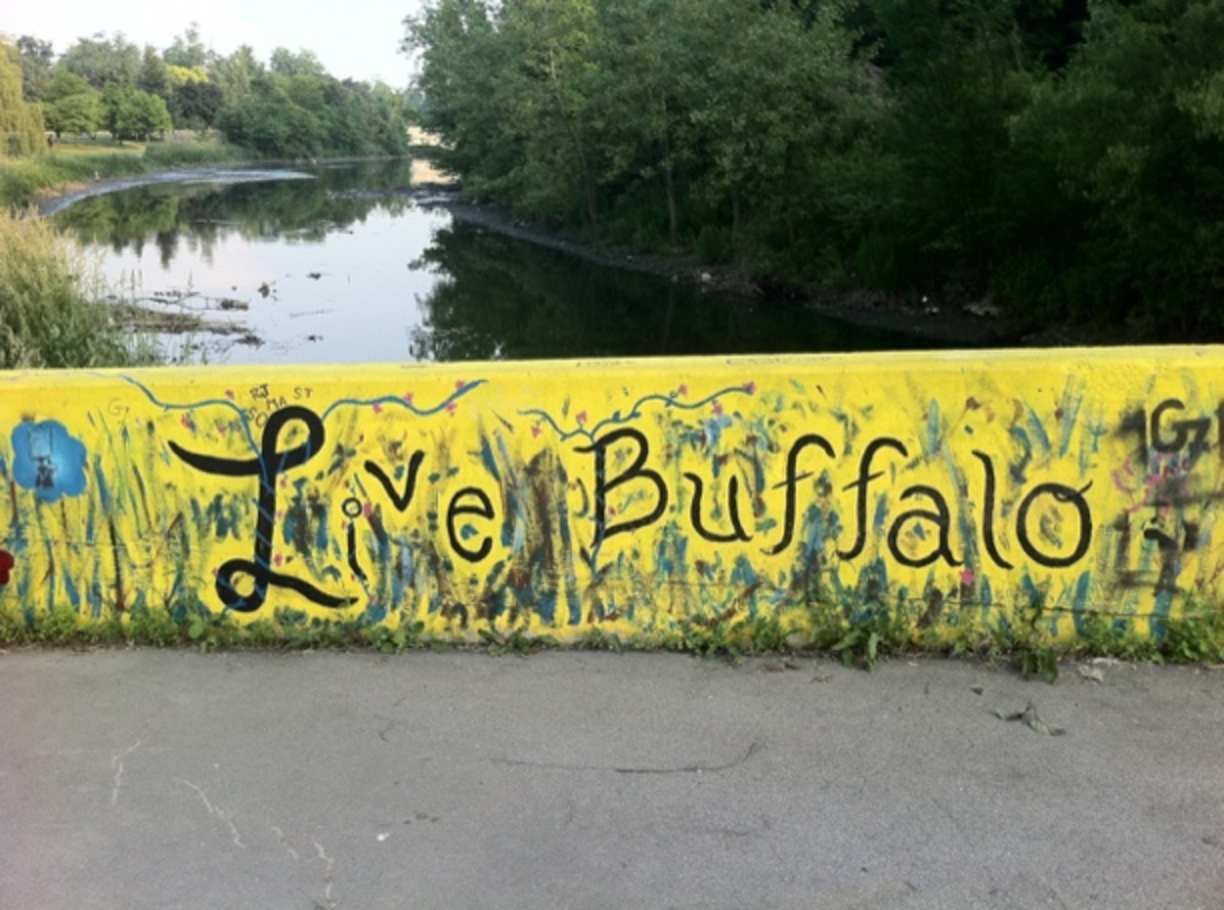things to do in buffalo, visit buffalo, trip to buffalo