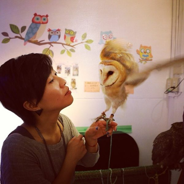 animal cafes in tokyo